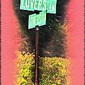 Lovers Lane by Bill Cannon