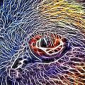 Loving Eye - 1 by Becca Buecher