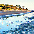 Low Tide At Jekyll Island by Kristin Elmquist