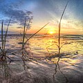 Low Tide In Crystal Beach by Zane Kuhle