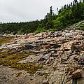 Low Tide - Walking On The Bottom Of Saint Lawrence River by Georgia Mizuleva