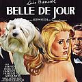 Lowchen Art - Belle De Jour Movie Poster by Sandra Sij