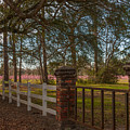 Lowcountry Gates To Boone Hall Plantation by Dale Powell