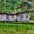 Lowcountry Heritage by Dale Powell