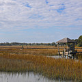 Lowcountry Playground by Dale Powell