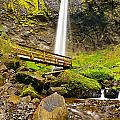 Lower Angle Of Elowah Falls In The Columbia River Gorge Of Oregon by Jamie Pham