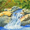 Lower Burch Creek by Walt Brodis