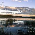 Lower Carter Pond At Dusk by Edward Shaffer