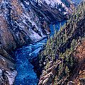 Lower Falls Into Yellowstone River by Tracy Knauer