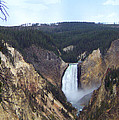Lower Falls Of The Yellowstone River by Charles Robinson