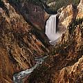 Lower Falls Of Yellowstone by Leda Robertson
