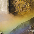Lower Falls Rainbow - Yellowstone by Sandra Bronstein