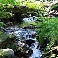 Lower Granite Falls 2 by Mike Wheeler
