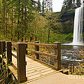 Lower South Waterfall With Footbridge In Oregon Columbia River Gorge. by Jamie Pham