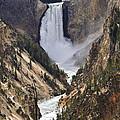 Lower Yellowstone Falls 2 by Lee Kirchhevel