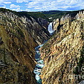 Lower Yellowstone Falls Panorama 2 by Catherine Sherman