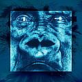 Lowland Gorilla by Christopher Korte