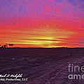 Loxley Al Sunset Dec 2013 I by Mark Olshefski