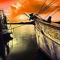 Lsu Shrimp Boat by Michael Thomas