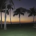 Luau Night Sunset by Andrea McClinnis