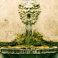 Lucca Fountain by Maria Huntley