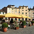 Lucca Piazza Del Mercato  by Christiane Schulze Art And Photography