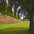 Lucca Walls by Mick Burkey