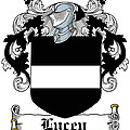 Lucey Coat Of Arms Irish by Heraldry