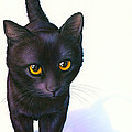 Lucky Cat by MGL Meiklejohn Graphics Licensing