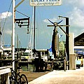 Lucky Fleet Key West  by Iconic Images Art Gallery David Pucciarelli