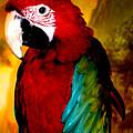 Lucky Look Bird by Colette V Hera  Guggenheim