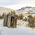 Lucky Outhouse by Sue Smith