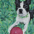 Lucy With Ball In Grass by Bridget Brummel