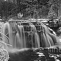 Ludlowville Falls In Winter I by Michele Steffey
