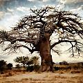 Luminous Sky And Tree Skeleton On The Prairie by Elaine Plesser