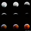 Lunar Eclipse by Ken Arcia