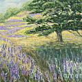 Lupines In May by Jeanne Wrede