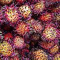 Lychee Fruit - Mercade Municipal by Julie Niemela
