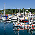 Lyme Regis Harbour On A July Morning by Susie Peek