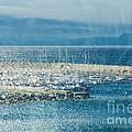 Lyme Regis Under Glass by Susie Peek