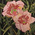 Lynda's Daylilies by Lynda K Boardman