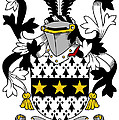 Lyster Coat Of Arms Irish by Heraldry