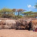 Maasai Huts In Their Village In Tanzania by Michal Bednarek