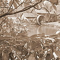Mabry Mill In Sepia by Diannah Lynch