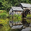 Mabry Mill In Virginia by Jill Lang