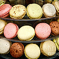 Macaroons by Olivier Le Queinec