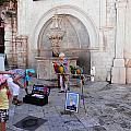 Macaws In Dubrovnik by Pema Hou