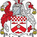 Macbride Coat Of Arms Irish by Heraldry
