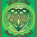 Maccabe Soul Of Ireland by Ireland Calling