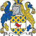 Maccann Coat Of Arms Irish by Heraldry